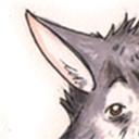 bigfluffydoggy