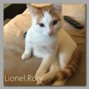 lionelrory