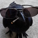sucker-for-six-of-crows