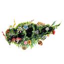 sadie-meredith