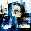 icedog225