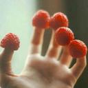 redwildstrawberrylove