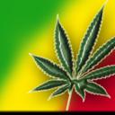 legalizaa