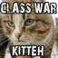 "Class War Kitteh ""The class war is being raged world wide. We tell the story through kittens."""