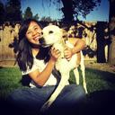 houndforsound-blog