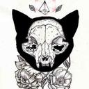 lilac-and-bones-blog