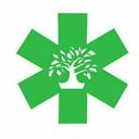vital-bonsai