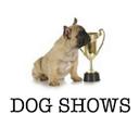 dogshowshd-blog