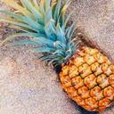 pole-ananasow