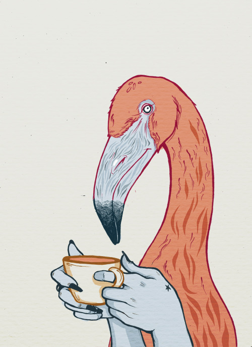 oldflorida:  Coffee bean beak, Old Florida style alinabohoru:    Flamingo Bingo