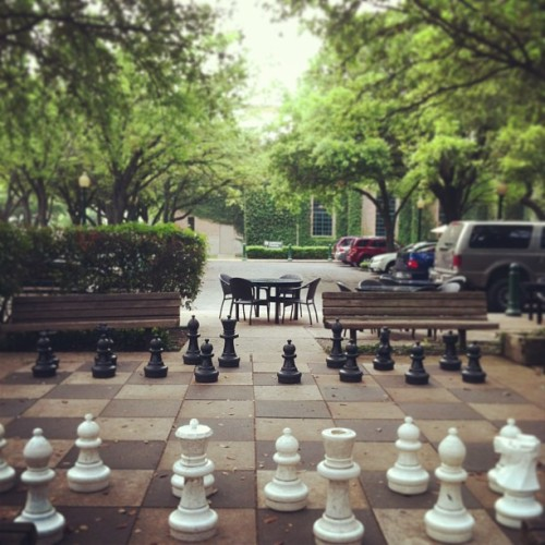 This is so cool! I kinda gasped when I saw it. ❤ #lifesizechess #montrose  (at Freed-Montrose Library)