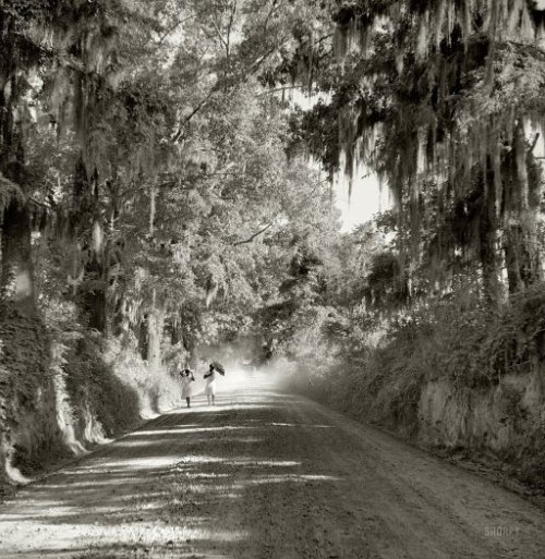 tuttiiviventi:  Marion Post Wolcott - Natchez, Mississippi, August 1940