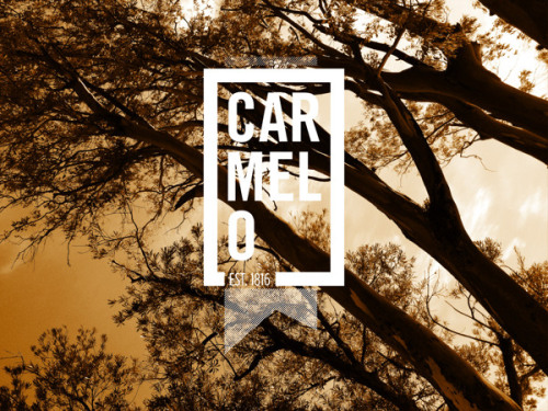 (via Carmelo on Behance)  Carmelo 2 from Pablo Zarate on Vimeo.