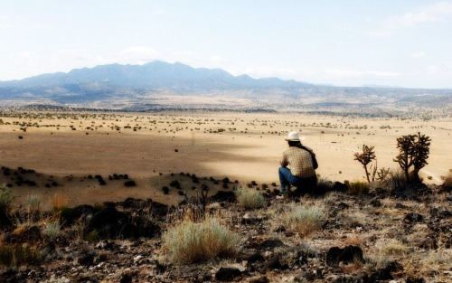 The Coen brothers' No Country for Old Men (still)