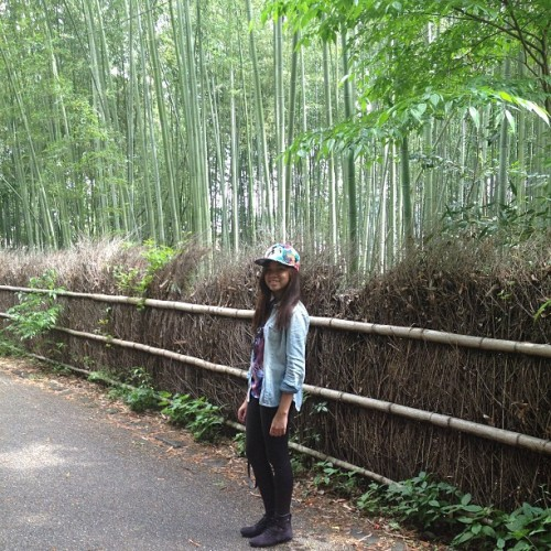 Bamboo Grove 🌾 (at Arashimaya Bamboo Forest)