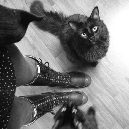 Thunder and lightning means rain boots and frightened kitties.
