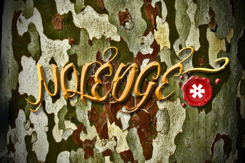 NOLEDGE* CLOTHING's new artwork ! So what y'all think ?