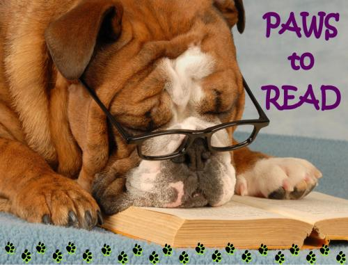 On Display: Paws to Read Take a cue from our furry friends and relax wirth a good book this month. Suggested titles: The Art of Racing in the Rain, by Garth Stein Marley and Me, by John Grogan A Dog's Purpose, by W. Bruce Cameron A Dog Year, by Jon Katz You Had Me at Woof, by Julie Klam