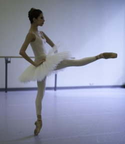 girl-in-a-tutu:  Alys Shee