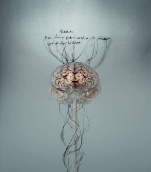 anatomyinmotionapp:  Did You Know: The brain itself cannot feel pain. While the brain might be the pain center when you cut your finger or burn yourself, the brain itself does not have pain receptors and cannot feel pain. That doesn't mean your head can't hurt. The brain is surrounded by loads of tissues, nerves and blood vessels that are plenty receptive to pain and can give you a pounding headache.Art by Helen Pynor
