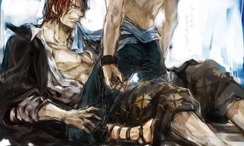 One Piece Marco the Phoenix Shanks Akagami no Shanks Shanks x Marco