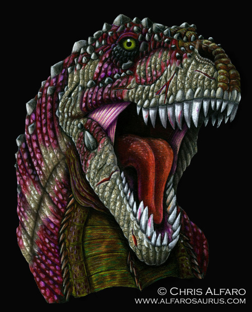 alfarosaurus:  Tyrannosaurus rex Colored Pencil on black Canson paper