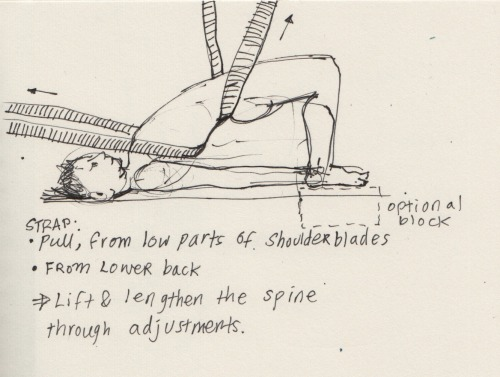 Strap adjustments for Setu Bandasana - bridge pose.  We went through this and other adjustments in Iyengar-style teacher training sessions.  Given that I have 2 friends to help adjust you in the pose - Slide two straps underneath the back. One assistant stands near my feet. The other sits before my head. Pulling at the lumbar spine and backside of the heart, the adjustors help hoist me up in the pose. I am using my muscles to lift myself up, not merely depending on the straps.   The adjustments help extend the back and open the chest.