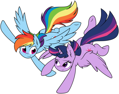 theponyartcollection:  [117] Rainbow Dash and Twilight: Teach Me to Fly by *DoktorRainbowFridge