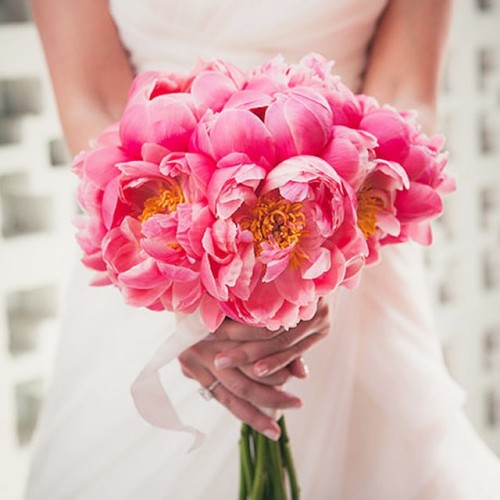 brides:  Happy #WeddingWednesday! Today, we're sharing some of our favorite #bouquets from Brides.com! Post an image of your wedding bouquet with the hashtag #BridesBouquets for the chance for a #regram!  This hot pink #peony bouquet is by @artisaneventfloraldecor. Photo: @zoomtheory 🌺
