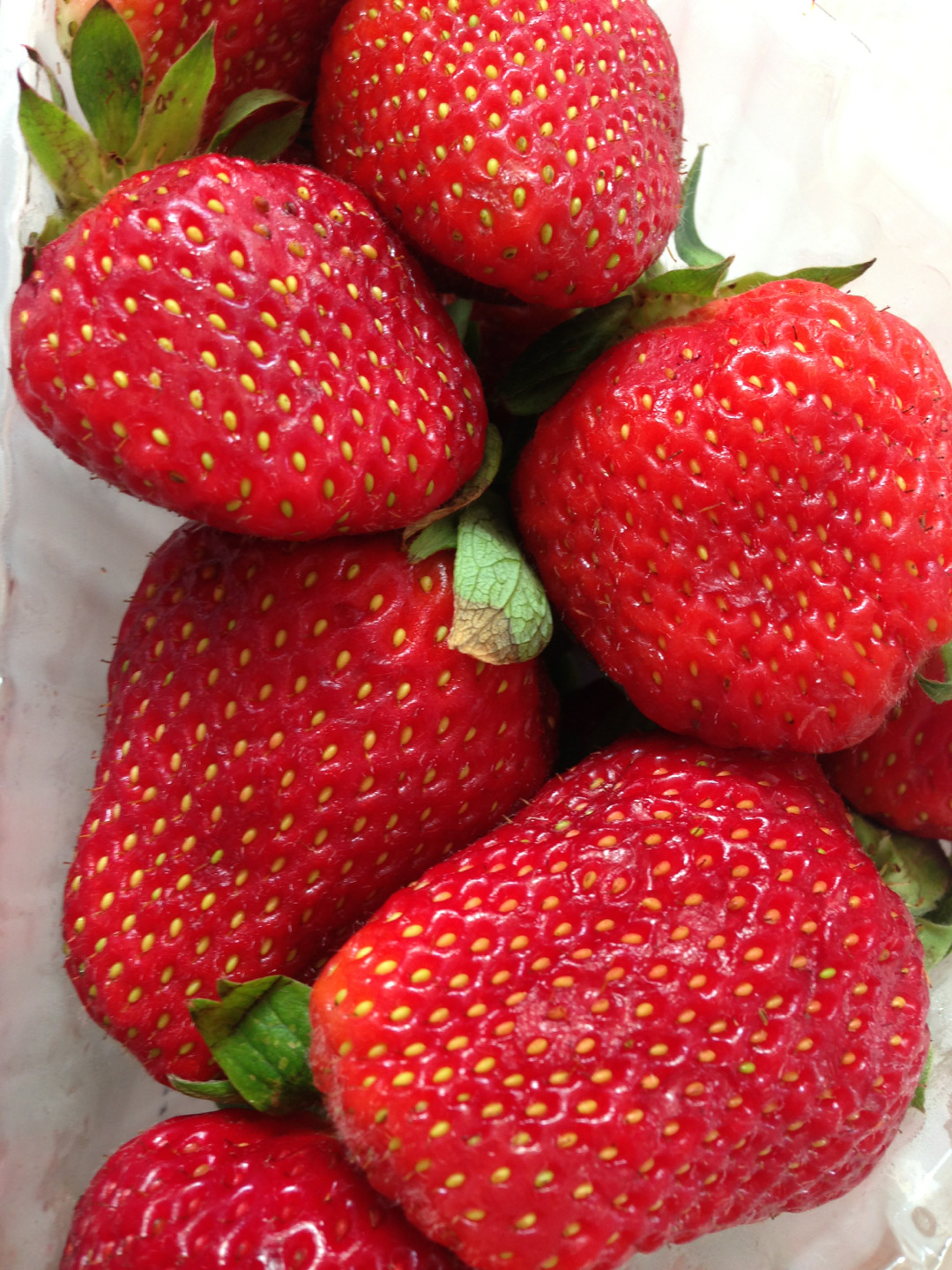 ishxq:  daw-n:  I like strawberries  because strawberries should be there on everyones blog