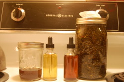 herbalwellness:  WHY MAKE TINCTURES- Tinctures are some of the most magical herbal medicines, and very easy to make. Soaking the herbs in strong alcohol for a few weeks brings out the herbal properties in full force. The shaking everyday helps to break down the cell walls and draw them out. Tinctures are basically really really strong teas. Instead of drinking a quart a day, you can take a dropperful three to six times a day instead. But they taste a whole lot worse. You can make them with alcohol, apple cider vinegar, or veggie glycerin (I will be talking about alcohol, but that is just a preference. They last almost indefinitely this way while they others expire sooner). DO NOT GIVE AN ALCOHOLIC AN ALCOHOL-BASED TINCTURE! It is a small amount, but it still heavily affects them.  Another reason why to make/take tinctures is since they are in an alcohol (or other base that is not water) it takes only about 5 minutes for the medicine to get into the bloodstream and start taking effect. tea takes about half an hour. There are two methods, the Simpliers and the more precise one. The precise one tries to recreate the tincture the same way every time, and I think takes away the individuality of each time. But some people prefere that. Simpliers is a whole lot easier and involves no math. You can make them with just one herb, or with multiple. HOW TO MAKE AN HERBAL TINCTURE- YOU WILL NEED: Herbs. Any amount will do, you really don't need much unless you are doing a large batch as presents or something. Since they are so powerful, and you use so little at a time, they usually last awhile unless you are on a regimin. Alcohol. You want a 100 proof brandy or vodka. Don;t get flavored, that's stupid. Trust me it will not make them taste better. A wide-mouthed glass jar with a tight-fitting lid A small bottle with a dropper. Not totally necessary, but the normal way they are sold and administered. A 1/8 teaspoon is about the equivalent for dosage if you cannot get one. Optional- a stone or some other small special memento to put on top. Doesn't really do much unless you believe in crystals holding energy and healing, which I somewhat do, but this is what I was taught. HOW TO: Put the herbs in the jar. They do not need to fill it my any means. Pour in alcohol, stop when it is about an inch or two above the herbs. Sometimes they float and this can be a little harder to tell, but if you have an eye for how much herb was in there before you added the alcohol you can guess. Put the lid on, leave in a cool dark spot OUT OF DIRECT SUNLIGHT for 4-6 weeks Shake vigorously everyday. Several times a day if you want. Dance with it. Think good thoughts.This energy you put into it now will be returned to your body (or whoever you give some to) when you use it. Herbal medicine is a relationship: Treat the herbs well and they will treat you the same back. When the time is up, strain and bottle. Take with love.