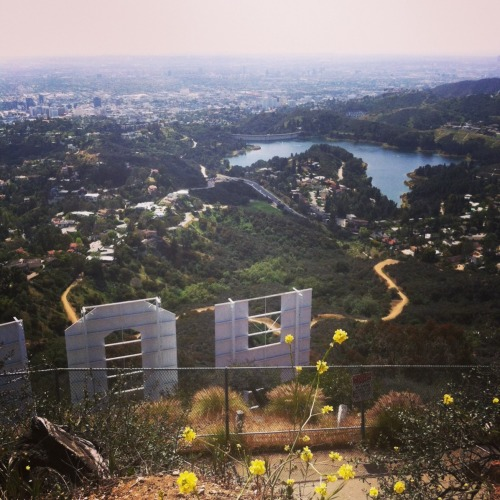 Hollywood sign hike. Taken by yours truly.