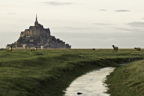 potatoesandkew:  allthingseurope:  Mont Saint-Michel (by Lucien Vatynan)  UGH I HAVE WANTED TO GO HERE SINCE FOREVER  Magical