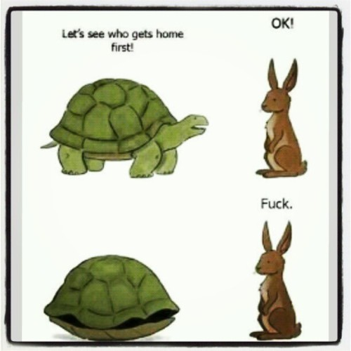 Lmfao! @rizalalalabyou @faithyyboo @yourfavgirl11 #funny #animals #home #hilarious #crazy