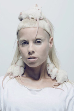 So in love with Die Antwoord