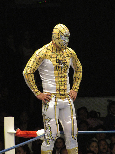 rudoreels:  Mistico as Spider-Man Mistico in Spider-Man-themed attire.