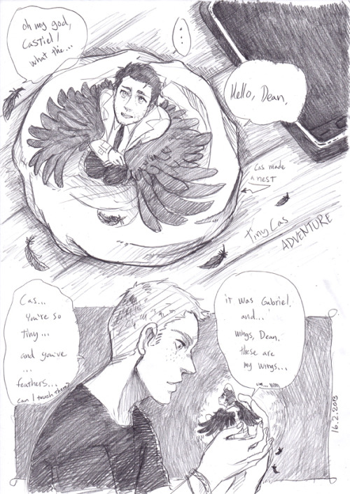 dinagastuff:  Tiny Cas with wings. is making a nest.