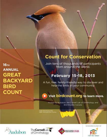 The 16th Annual Great Backyard Bird Count will be held Friday, February 15 through Monday, February 18.  It's fun, free, easy, and every checklist submitted helps ornithologists at Cornell University and the National Audubon Society learn more about birds and the environment. If you'd like to participate, please visit BirdSource, where you can download a checklist to use, view results from past counts, and print a free poster with images of commonly seen birds of North America!
