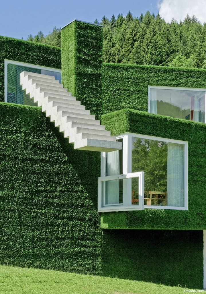 dearscience:  Green house
