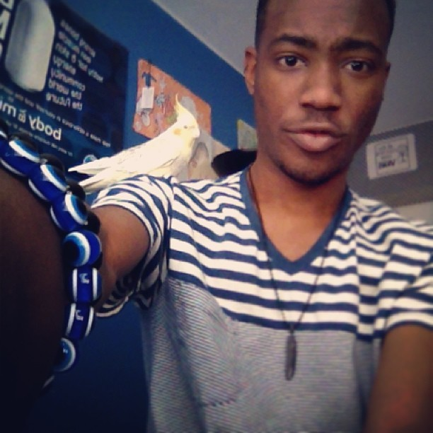 Me and this dude! #bird #vneck #strips #necklace #bracelet #evileye #evilbird #cute #cockateil🐥 #grossmont #tired #night😴