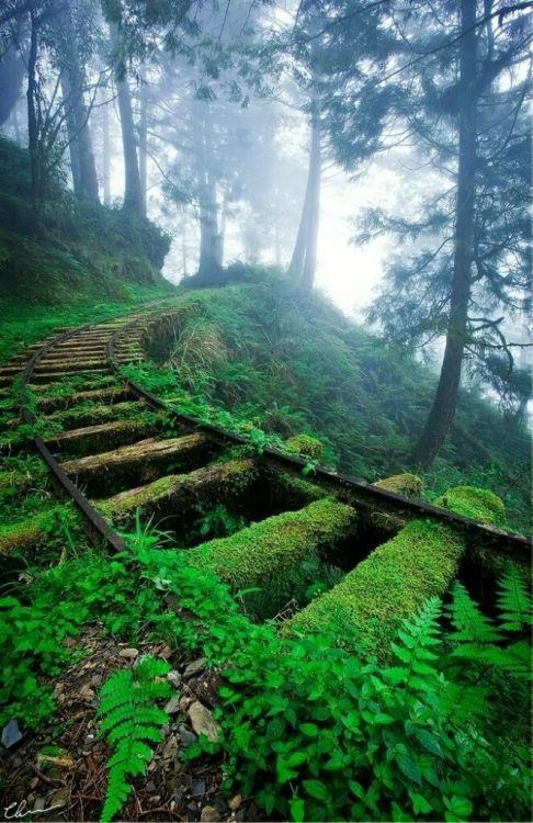 xrizeis:  abandoned railroad