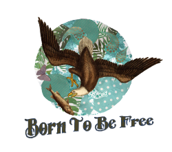 Born Free Tee shirt design. A new mixed media piece that I designed on a friends request. Click the pic to have a look at the tee shirts and all the cool designs it comes in.