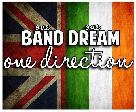 #onedirection #harry #niall #lousi #zayn #liam #irish #ireland #british #love #pasion #inlove #mine #bemyvalentine #boys