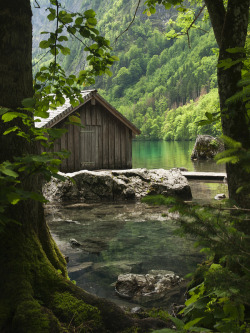 wildforestelf:  The Hidden House by M. Hoz via Flickr