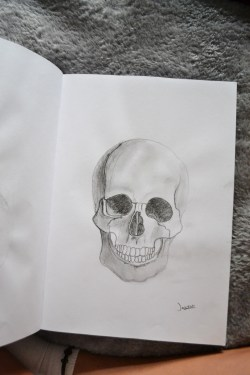 verpesten:  verpesten:  Skull sketch by JW   why doesn't this have notes :c