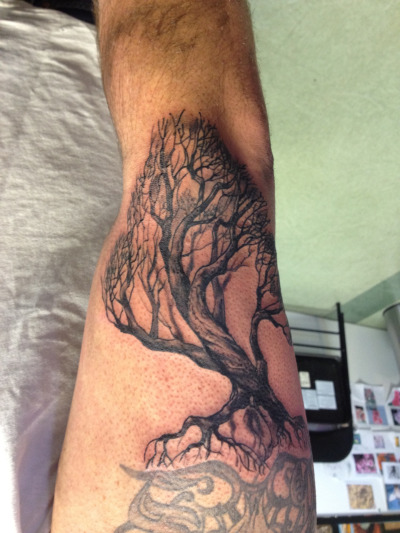 kurtfagerland:  Freehand trees are always fun.
