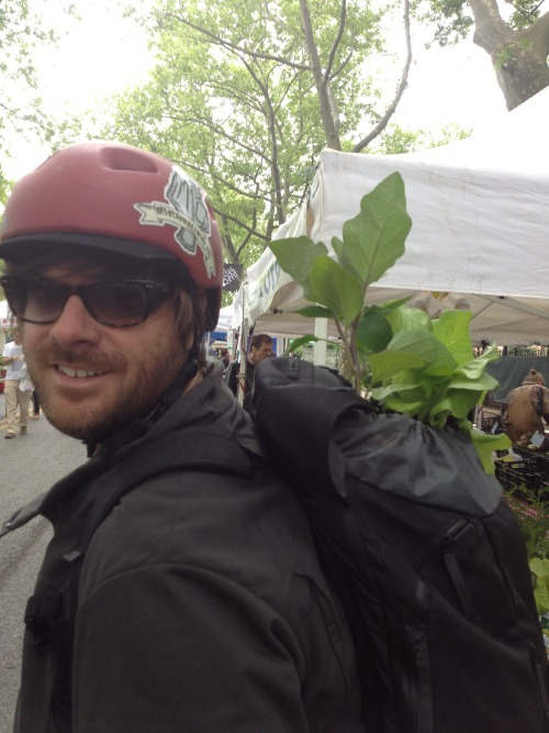 I think I'll make the plants in the backpack on the bike thing my new look.