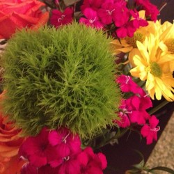 #welcome to #sanfrancisco #flowers from rob :)