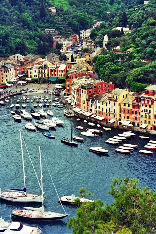 | ♕ |  Portofino harbour, Italian Riviera  | by © almasic