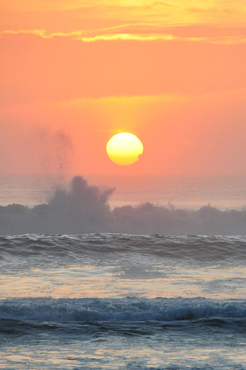 plasmatics-life:  Morning Sunrise by Paul